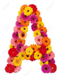 flower alphabet a stock photos u0026 pictures royalty free flower