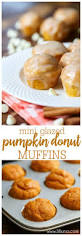 Pumpkin Food by Best 25 Pumpkin Foods Ideas On Pinterest Pumpkin Flavor Of Love