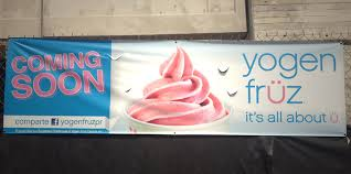 frozen yogurt archives point of sale surveillance