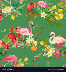 fruits flowers tropical fruits flowers and flamingo background vector image