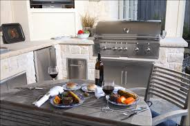 lowes outdoor kitchen cabinets yeo lab com