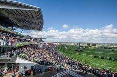 target black friday race track belmont park racecourse is one of the two major horse racing
