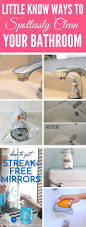 best 25 shower mold ideas on pinterest cleaning shower mold