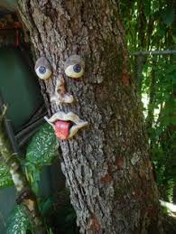 tree face how to mold tree faces tree faces face and gardens