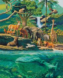 lds org primary manual creation u2014living creatures
