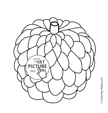 custard apple clipart black and white clipartxtras