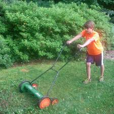 southeast gardening eco friendly lawn tools