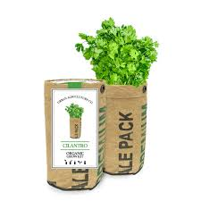 cilantro herb garden grow kit from jackson u0026 perkins