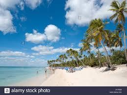 beach at bayahibe south coast dominican republic caribbean