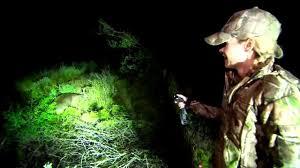 cyclops varmint gun light cyclops get out of the dark lights youtube