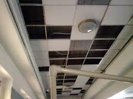 beautiful dropped ceiling tiles u2014 basement and tile ideas