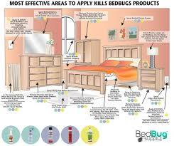 Can Bed Bugs Live On Cats 25 Unique Bed Bug Remedies Ideas On Pinterest Bed Bug Spray