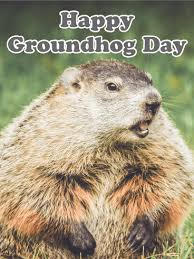 groundhog day cards let s for groundhog day card birthday greeting