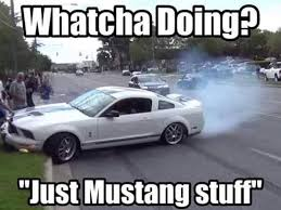 Ford Mustang Memes - cue the mustang memes because ford has just issued a huge recall