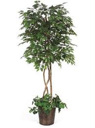 artificial decorative trees for the home indoor trees plants shop artificial decorative how do i clean 1