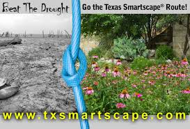 native north texas plants environment u0026 development nctcog org