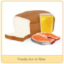 low fiber low residue diet gastroparesis variety is the spice