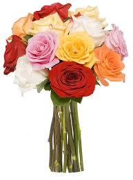 roses bouquet benchmark bouquets dozen rainbow roses no vase