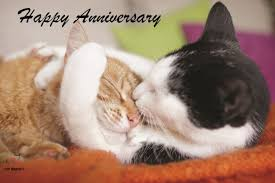 anniversary ecards free free e cards