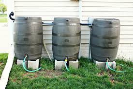 rain barrel watering system a great addition to your raised