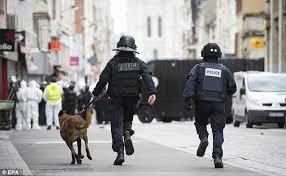 belgian shepherd diesel hasna ait boulahcen cousin of paris attacks mastermind did not