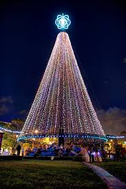 Christmas Decorations Buy Online Nz by 64 Best Christmas In New Zealand Images On Pinterest Christmas