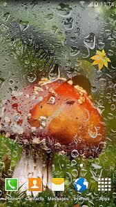 imagenes animadas de otoño descargar autumn mushrooms para android gratis el fondo de pantalla