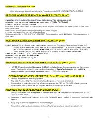 Previous Work Experience Resume Raju Letest Utility Resume