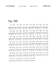 chp code 1125 patent us5821124 hybridoma cell lines and antibodies that bind