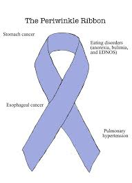 periwinkle ribbon periwinkle ribbon stomach cancer disorders wear