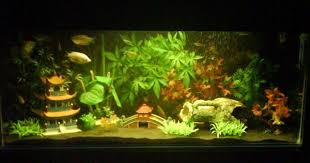 japanese pagoda theme aquariums japanese pagoda