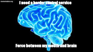 Scumbag Brain Meme Generator - brain meme â meme maker â make a meme online