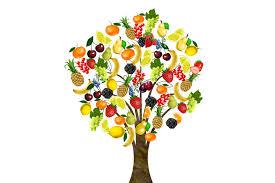 fruit tree bless you free image on pixabay