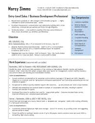 Vice President Of Sales Resume 21 Perfect Marketing Resume Templates For Every Job Seeker Wisestep