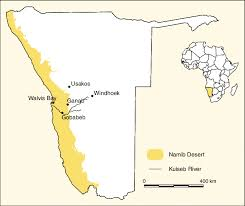 africa map kalahari desert desert facts conservation status map climate wildlife