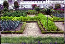 Backyard Kitchen Garden How To Smartly Organize Your Kitchen Garden Design Kitchen Garden