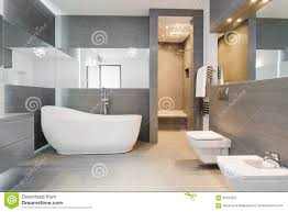 modern bathroom with freestanding tub and shower stock photo