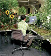 Small Plants For Office Desk by Office Worker At Desk Covered In Plants And Flowers Rear View