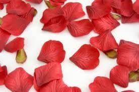 Rose Petals Silk Rose Petals For Weddings Lovetoknow