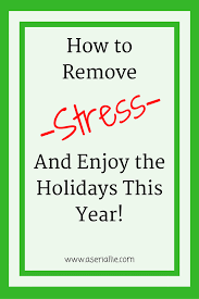 how to remove stress and enjoy the holidays this year a serial