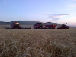 case ih 2013 harvest report montana colorado nebraska