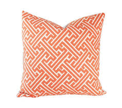 ready to ship 16x16 amazed guava designer pillow cover for