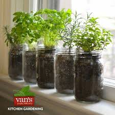 Window Sill Herb Garden Designs Window Sill Herb Garden Ideas Neil Mccoy