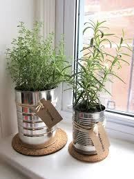 indoor kitchen garden ideas indoor wall herb garden ideas