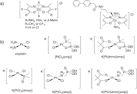 Rational K Hen Metal Complexes And Metalloproteases Targeting Conformational