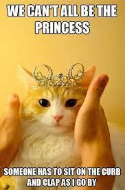 Be Happy Meme - best 30 cat memes memes 30th and cat