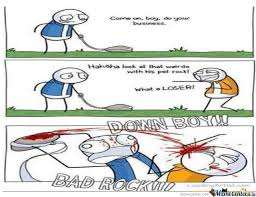 Pet Rock Meme - note to self never insult a guy with a pet rock by