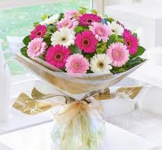gerbera bouquet mixed gerbera bouquet abi s arrangements