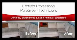 puregreen carpet cleaning