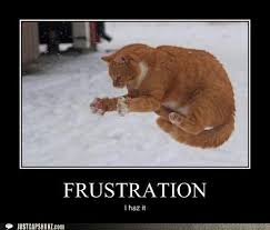 Frustrated Meme - 10 best frustration images on pinterest funny things funny
